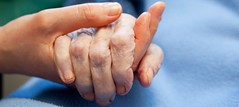 The Helping Hand of Ally (Ally Home Care) Tags: old grandma two people woman love senior girl female hospital person holding hands women hand adult grandmother touch young compassion visit patient medical help health human mature together elderly age elder nurse aged care sick wrinkle nursing hold assistance retirement illness wrinkled caucasian pensioner