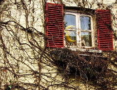 AMoonWithAView (Hodd1350) Tags: red christchurch moon window face sony crescent dorset shutters creepers a77