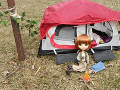 Kitty_Rose_Camping (TrueFan) Tags: puddle contest 2013 pullipanddaldollloversevent