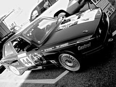 Muscle Car Masters 2010 (Paul D'Ambra - Australia) Tags: cars racetrack racecar australia racing nsw vehicle newsouthwales circuit musclecar duplicate motorsport racingcar trackday touringcar motorvehicle easterncreek racecircuit historiccars dambra easterncreekraceway musclecarmasters sydneymotorsportpark pauldambra