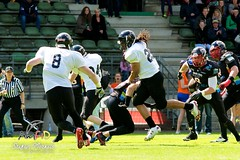 Cologne Falcons vs. Duesseldorf Panther 2013-05-12 15-20-54 (AmFiD) Tags: football gfl dsseldorfpanther colognefalcons amfid