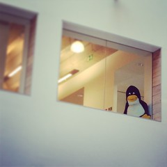 Penguin (yumtan) Tags: london office