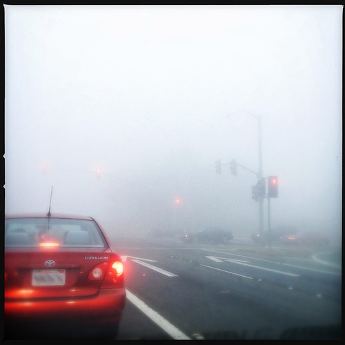 Foggy stoplight in San Francisco
