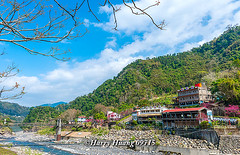 Harry_09715,,,,,,,,,,,,,,,,,,,,,,,,,,, (HarryTaiwan) Tags: taiwan    d800                           harryhuang