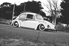BoolsEye_Flip 11_Hi-res (BoolsEye photography) Tags: vw bug volkswagen beetle flip aircooled capestance