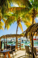 Sint Maarten (Jon Anderson|Photography) Tags: trees beach dutch marina island photography restaurant saintmartin jon sony palm palmtrees anderson tropical caribbean fullframe alpha tropics 850 sintmaarten a850 tamronspaf2040mmf2735if alpha850