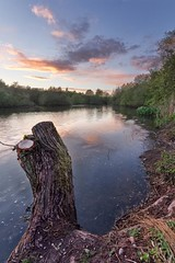 Mill Lakes 2 [Explored] (alexbaxterca) Tags: nottingham lake landscape bestwood bestwoodcountrypark 60d notthinghamshire landscapeshotinportraitformat bestwoodvillage milllakes