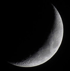 Waxing Crescent, 22% of the Moon is Illuminated 051413 Canon SX50 HS RAW to JPEG IMG_8847 (Ted_Roger_Karson) Tags: moon canon illinois moonshot solareclipse crescentmoon canonpowershot movingclouds northernillinois tonightsmoon moonwatch lunartics rawtojpeg sx50hs canonpowershotsx50hs canonsx50hs 50xopticalzoom