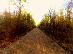 Just Go (*Abstrax) Tags: county usa brown green nature colors wisconsin forest four spring woods country trails earthy atv wheeling langlade