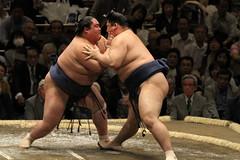 Grand Sumo Tournament 2013-05-12 (IMG_6171) (Wonder Westie) Tags: travel japan canon tokyo wrestling tournament wrestlers sumowrestling rikishi ryogokukokugikan grandsumotournament