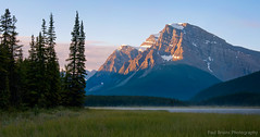 Canadian Rockies Sunrise (Panorama Paul) Tags: panorama sunrise banffnationalpark sigmalenses waterfowllakes nikfilters nikond300 wwwpaulbruinscoza paulzizka paulbruinsphotography annestrickland