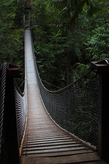 Bridge (Sam Olds) Tags: canada lynncanyon vancouverbc samolds