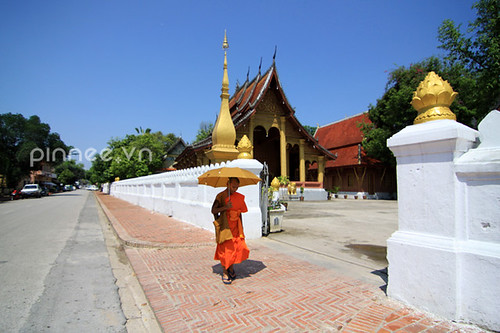 A monk walking along the pagodas