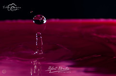 Droplet photography 12 (Robert Stienstra Photography) Tags: water droplets drops droplet waterdrops waterdropphotography dropletphotography robertstienstraphotography