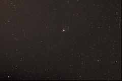 Western Veil Nebula (tremulant.) Tags: space astrophotography astronomy veilnebula ngc6960 westernveil Astrometrydotnet:status=solved Astrometrydotnet:id=supernova507