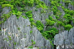 Bacuit Bay, Palawan (cisc1970) Tags: nikon philippines elnido palawan bacuitbay d5200