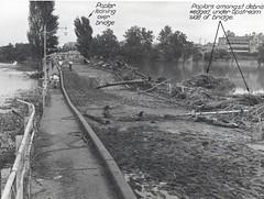 Long Bridge, Maitland, N.S.W., February 1955 flood (maitland.city library) Tags: bridge hospital flooding long flood photos newsouthwales floods loose maitland floodwater roadsend 00090