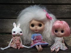Marshmallow, Jaslyn and Clover