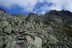 Urcușul spre vârful Negoiu din Căldarea Pietroasă