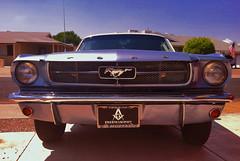 1,000,000 Miles (oybay) Tags: old arizona classic ford car automobile mustang ponycar suncity originalowner 50years 196412