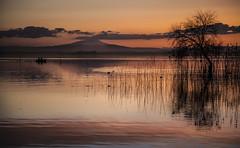 Il lago d'inverno (da.geli) Tags: