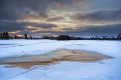 No. 0994 Frozen puddle (H-L-Andersen) Tags: morning winter sky snow rural sunrise landscape denmark puddle landscapes frozen frost farming farmland 1740mm sne 6d frederikshavn landoflight canoneos6d hlandersen frostetmorning kragskovhede