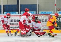 Junghaie vs. Düsseldorfer EG 2:6, 15.03.2015