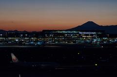 D7K_3010.jpg (Keznx) Tags: aviation haneda hnd b737 rjtt