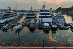 yacht (wcheunga1) Tags: new light sunset hk sun reflection beautiful hongkong gold golden coast boat nikon day yacht outdoor 28mm year chinese snap hour d750 lantern