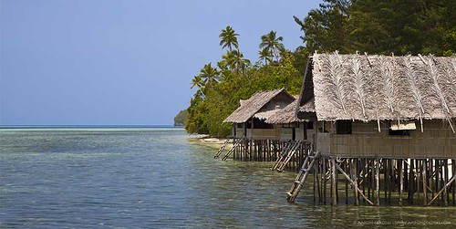 Superior Papuan Cottage