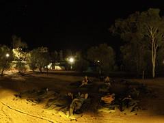 Camping à Ayers Rock Resort, sans araignée ni dingo