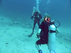 Koh Tao (Scuba Diving), Thailand (Jan-2016) 13-004 (MistyTree Adventures) Tags: ocean water thailand divers seasia underwater outdoor diving scubadiving kohtao gulfofthailand scubadivers panasoniclumix chumphonpinnacle