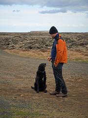 4mai_Thorbjorn_010 (Stefn H. Kristinsson) Tags: dog mountain dogs iceland spring hiking may ma vor hundur sland ganga fjallganga tamron2875mm grindavk hundar grindavik orbjrn nikond800 thornbjorn orbjarnarfell