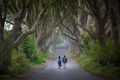On a long road (esslingerphoto.com (back in London)) Tags: bushmills ireland darkhedge gracehillhouse couple walking road mist beech trees intertwined