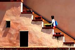 Tornando a casa (meghimeg) Tags: flowers shadow woman sun stairs walking donna ombra scala fiori sole imperia 2016 mattoni brics camminando