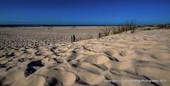Top Of The Dunes (T i s d a l e) Tags: march spring landsend outerbanks sanddunes easternnc tisdale 2016 sandfence boguebanks topofthedunes