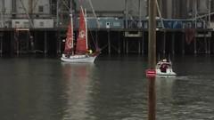 The Golden Rule (David A's Photos) Tags: oregon sailboat portland peace willametteriver multnomah rosefestival vfp veteransforpeace goldenrule willametterive june2016