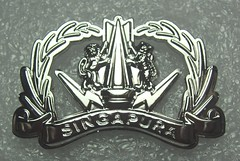 Singapore Army Advanced Explosive Ordnance Disposal (EOD) (Sin_15) Tags: army singapore military disposal eod badge insignia explosive saf ordnance
