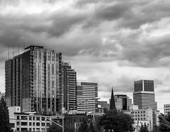 Portland Skyline (pillarsoflight) Tags: blackandwhite bw monochrome beauty oregon 35mm portland prime aperture nikon adobe pdx desaturated 18 pnw lightroom d3300
