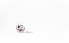 Pink buttons (Martzimages) Tags: stilllife buttons jar highkey minimalism selectivecolour colourpop martzimages