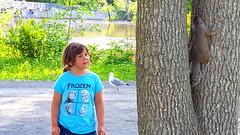 Installation  l'le-des-Moulins (Leelooart) Tags: vacances soleil photographie installation t landart 24juin activits photographe jeux terrebonne ftenationale saintjeanbaptiste ecodesign iledesmoulins sodect