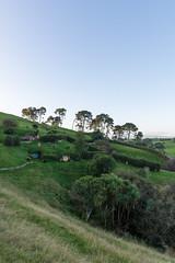 Hobbit holes on the hill (David Mecys) Tags: newzealand northisland thehobbit hobbiton thelordoftherings newzealand2016