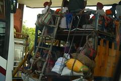 A big Punjabi family, on road trip, near Mathura-Agra Highway (ilovethirdplanet) Tags: india truck roadtrip mathura ind uttarpradesh