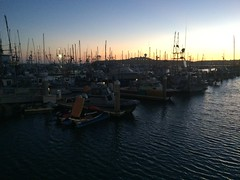 """2016 Half Moon Bay Cruise • <a style=""""font-size:0.8em;"""" href=""""http://www.flickr.com/photos/7120563@N05/27458796591/"""" target=""""_blank"""">View on Flickr</a>"""