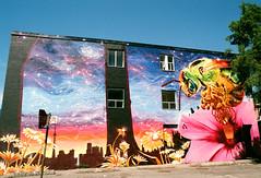 Bee-utiful Mural (Georgie_grrl) Tags: pink flowers toronto ontario beautiful graffiti mural expression details flight creative environmental bee bumblebee statement pentaxk1000 savethebees rikenon12828mm nicksweetman werenothingwithoutthem bloorstreetwestandhowland