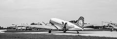 Luchtmachtdagen 2016 (Iemand91) Tags: netherlands dutch open force air royal days douglas dc3 dakota association leeuwarden 2016 luchtmachtdagen phpba