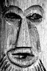 Ghost tree II (Images from Leo) Tags: summer tree face nikon gesicht sommer ghost geist baum schwbischealb nikond5200