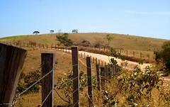 Sete Curvas 19-06-16 Bittencourt 55 (Rebas do Cerrado) Tags: cerca