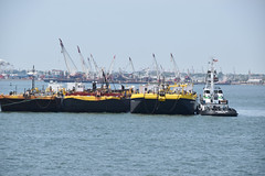 Picture Taken From The Staten Island Ferry Of The Tugboat Tangier Island And Barges. Photo Taken Monday June 27, 2016 (ses7) Tags: ferry island staten viewtugboat
