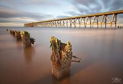 Gnawed (Steve Clasper) Tags: uk longexposure light sunset golden coast pier north coastal posts northern northeast stumps hartlepool nd110 steetleypier steveclasper
